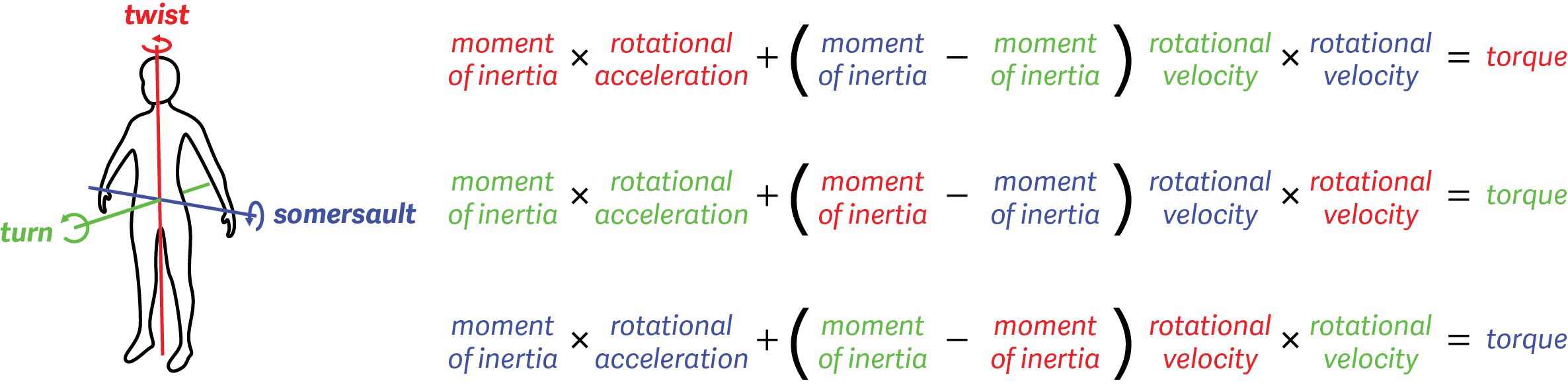 Euler's equations for rigid body dynamics show the (complex) relationship between how Simone Biles positions her body and how she flips, twists and turns.